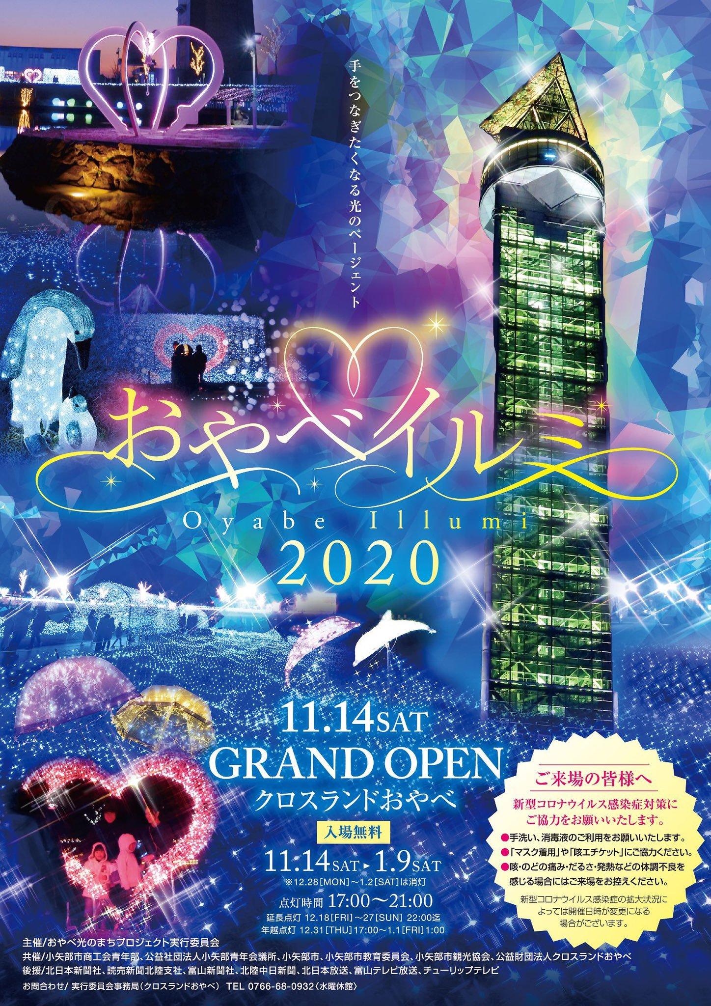 【 おやべイルミ 2020】が開催!期間や点灯時間などをチェックしよう!