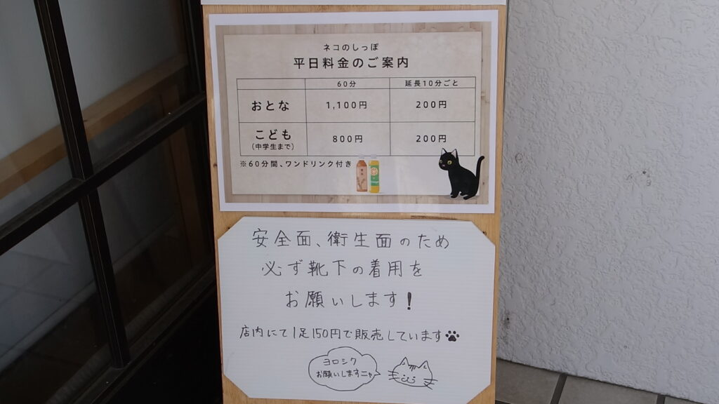【動画あり】高岡市初!譲渡型保護ネコカフェ『 ネコのしっぽ 』に行ってきた!